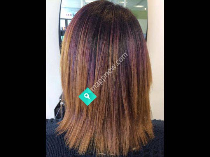 Tangles Hair Design New Plymouth