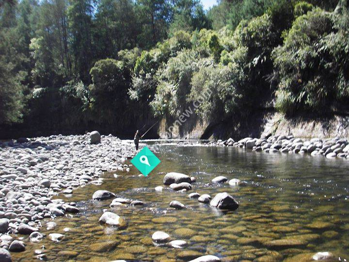Trout Fishing Guides New Zealand